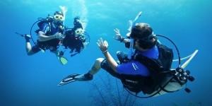 Padi Divemaster Aqualonde